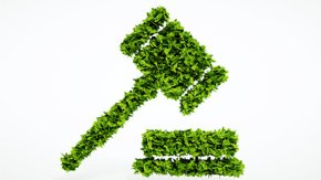 EU Sustainable Finance Disclosure Regulation – What to expect?