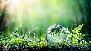 Carbon Footprinting for Responsible Investing